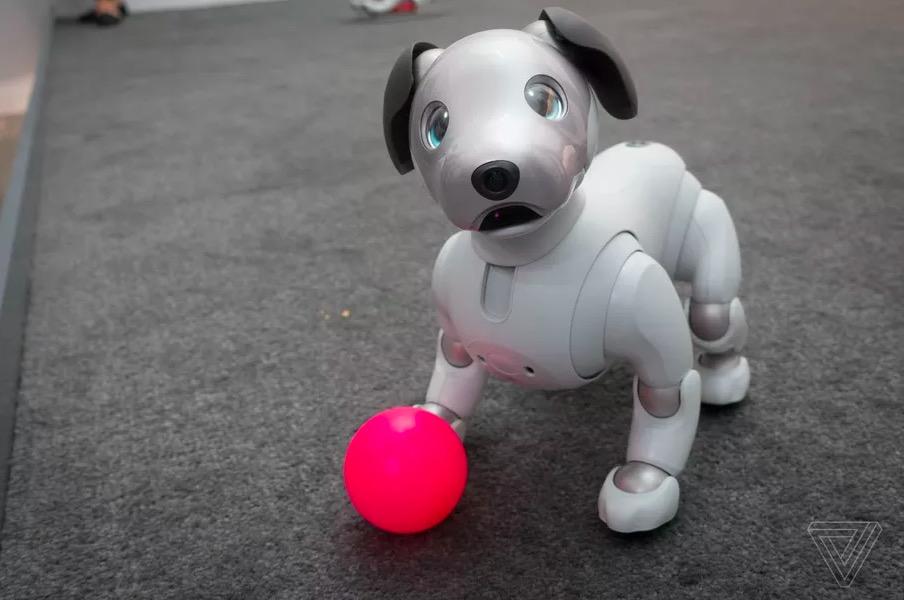 这款在美帝售价2899美元的索尼机器狗很激萌
